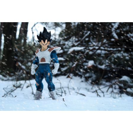Dragon Ball Z - Vegeta - plakat