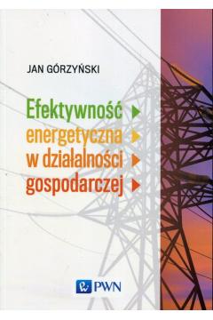 Efektywność energetyczna w działalności gospodarczej