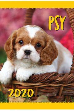 Kalendarz ścienny 2020 Psy