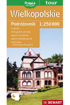 Polska niezwykła. Wielkopolskie. Podróżownik 1:250
