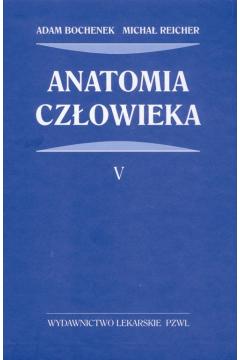 Anatomia człowieka. Tom 5