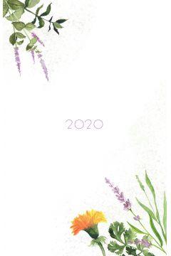 Kalendarz 2020. Zielnik