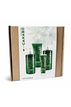 Zestaw Konopie (balsam + krem do rąk + żel pod prysznic + szampon)