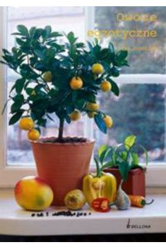 Owoce egzotyczne