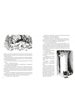 Muminki. Zebrane. Część 1. Tom 1-5