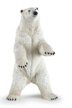 Niedźwiedź polarny stojący