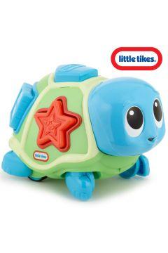 Żółwik Edukacyjny