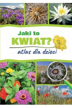 Jaki to kwiat atlas dla dzieci