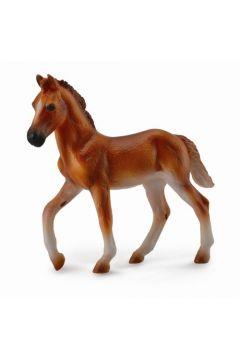 Koń peruwiański Paso maści kasztan