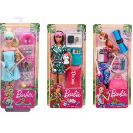 Barbie ჯანსაღი ცხოვრების ნაკრები