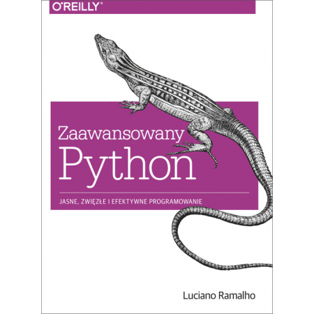 Zaawansowany Python. Jasne, zwięzłe i efek. prog.