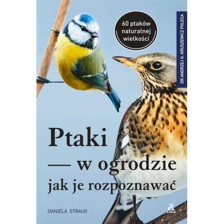 Ptaki w ogrodzie - Jak je rozpoznawać