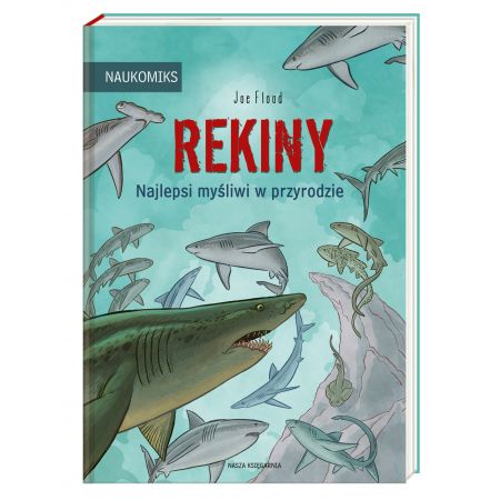 Rekiny - najlepsi myśliwi w przyrodzie