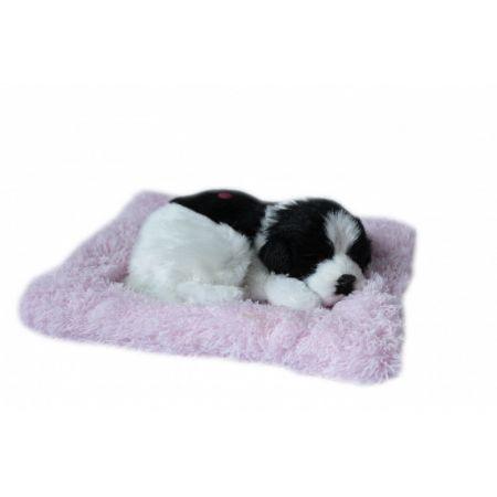 Spiący piesek na poduszce - biało czarny