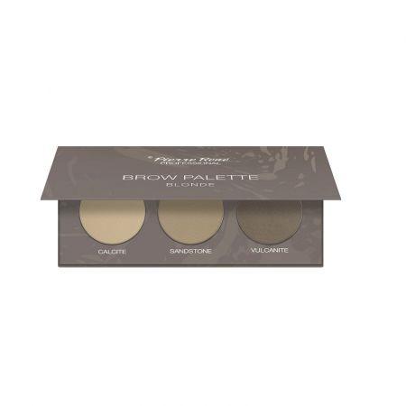 PIERRE RENE_Brow Palette paletka cieni do brwi 01 Blonde 3x1,