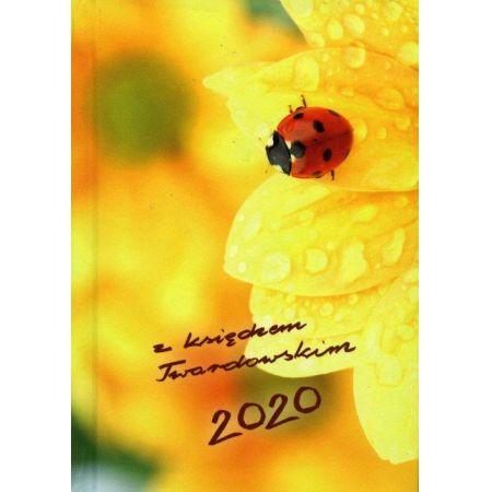 Kalendarz 2020 z księdzem Twardowskim Biedronka