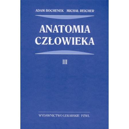 Anatomia człowieka. Tom 3